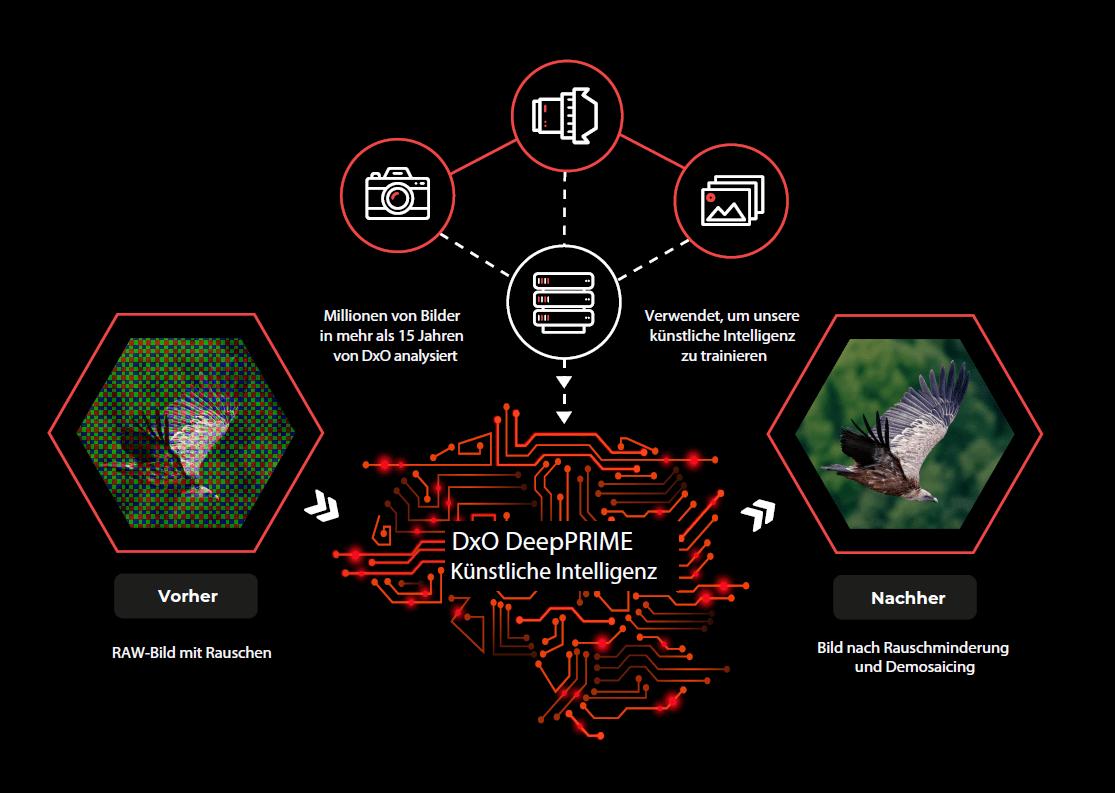 DeepPRIME-AI